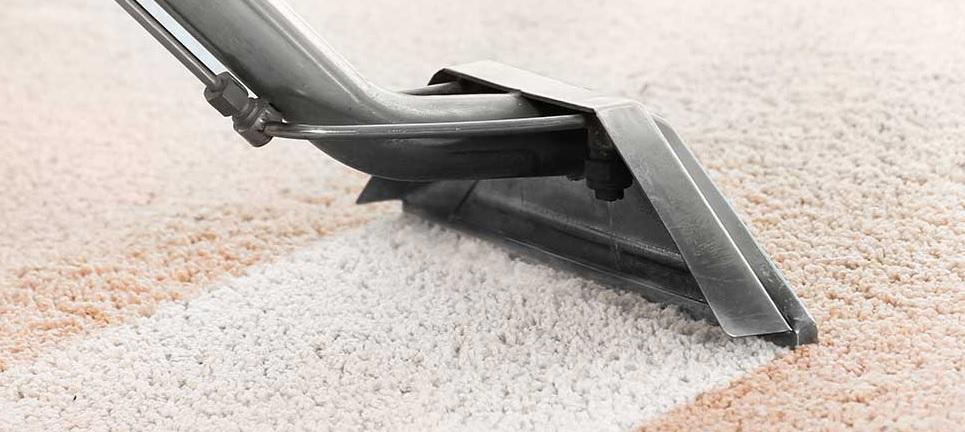 Carpet Cleaner Rental Pickering On Carpet Cleaning Durham